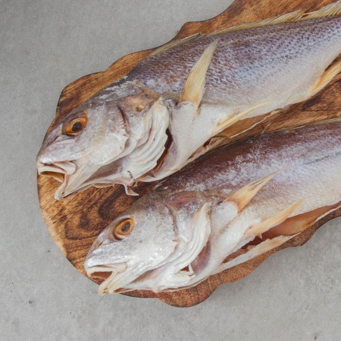 반건조 냉동 민어 (대서양 꼬마민어) 3마리 (대)