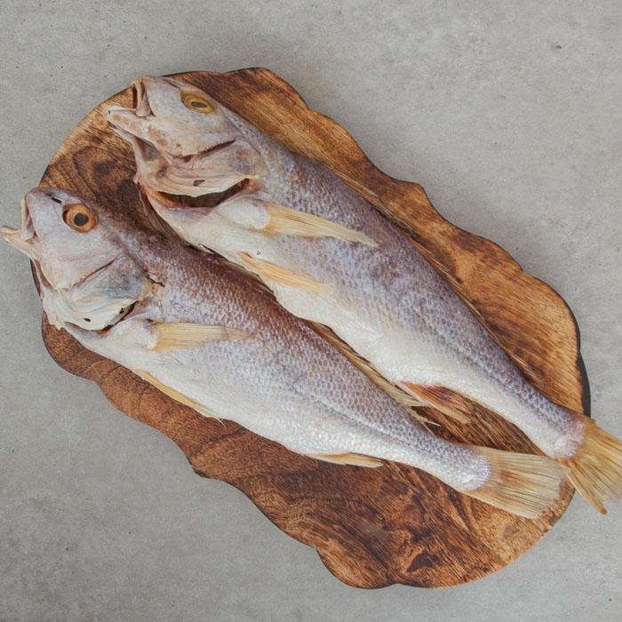 반건조 냉동 민어 (대서양 꼬마민어) 3마리 (중)